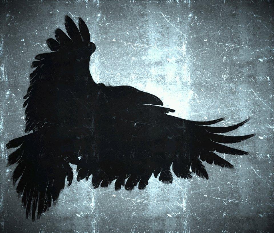 raven shadow 1